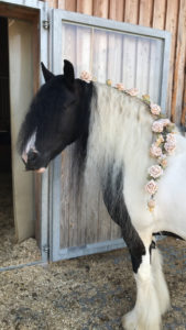 Pferd mit Rosen